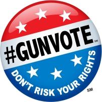 Gun vote logo